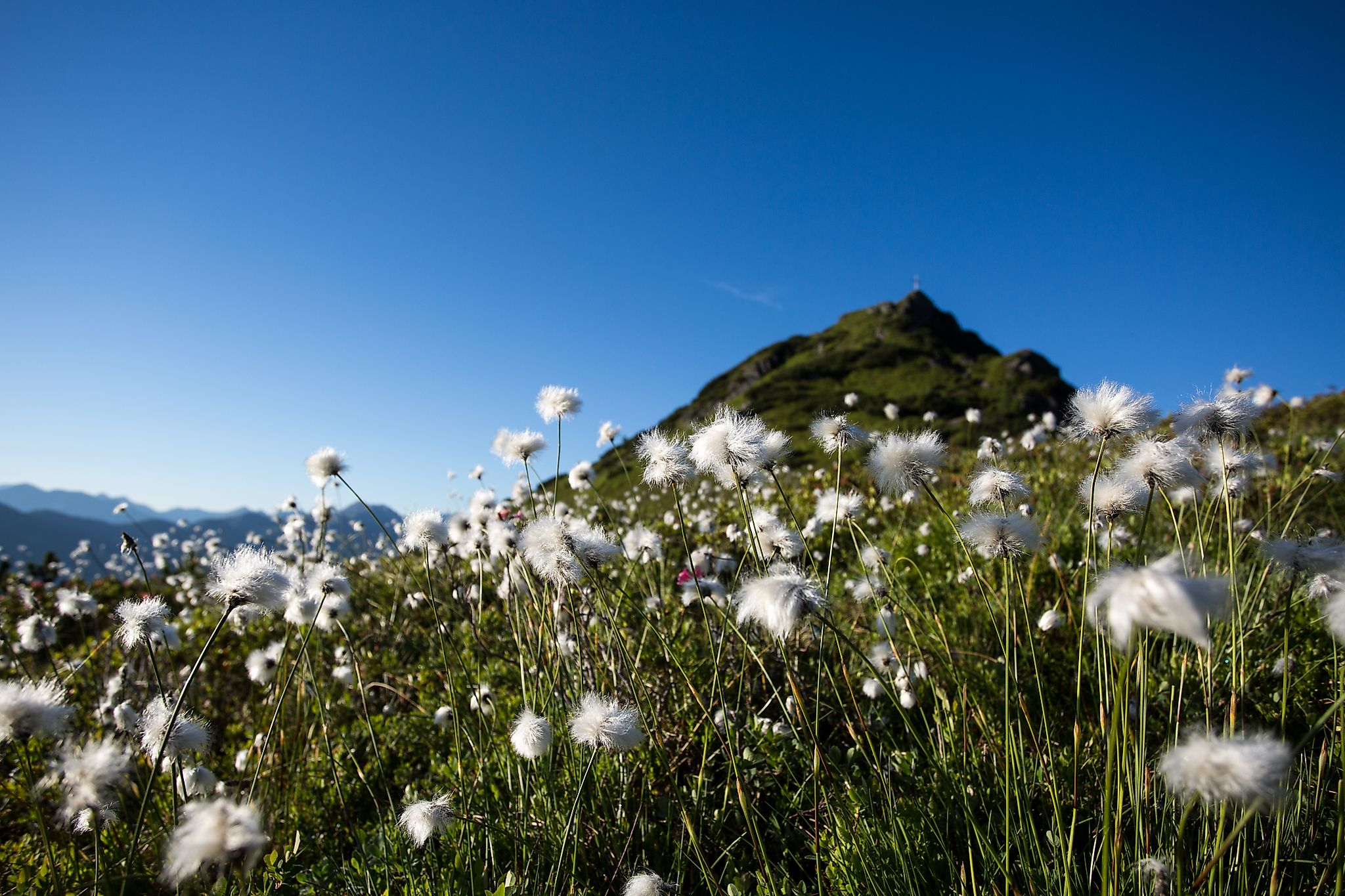 <p>The local mountain of Flachau offers a variety of hiking possibilities.</p>
