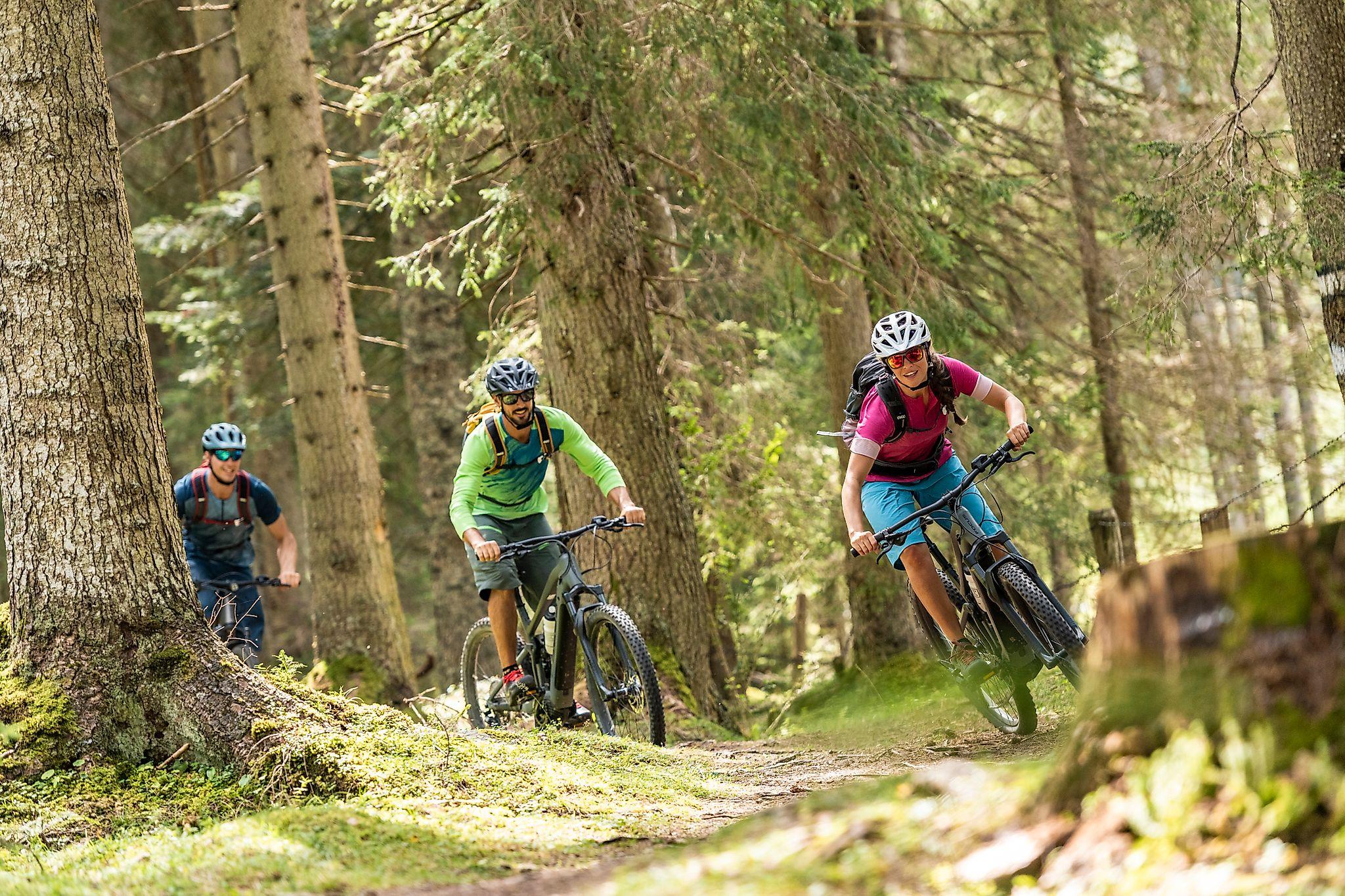 <p>Biken im Wald - Bikeparadies Flachau</p>